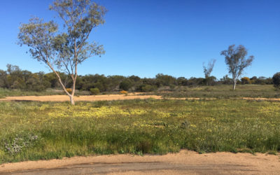 Mullewa Observing Site – Old Mullewa Golf Course