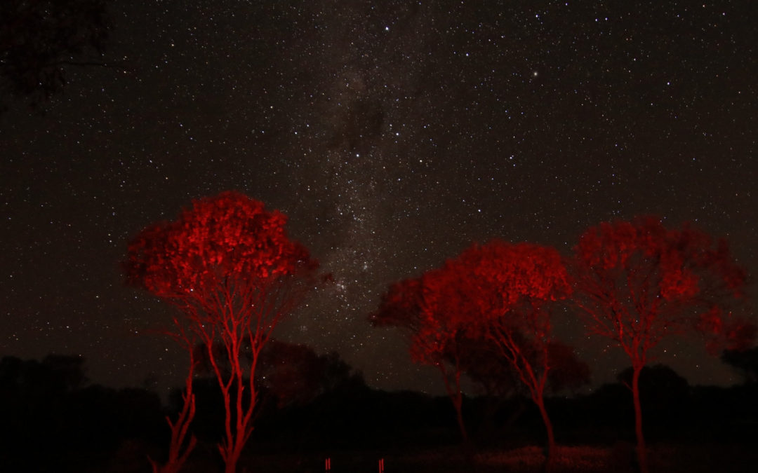 Mullewa Astrophotography Hot Spot – Perkins Well #2