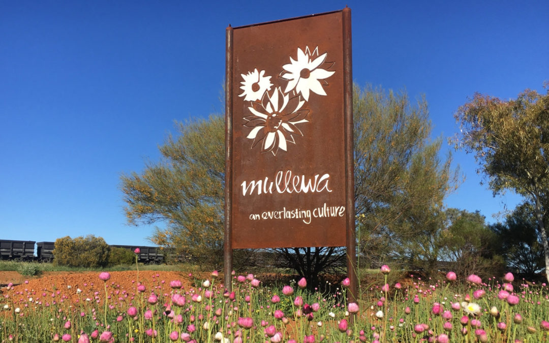 Mullewa Astrotourism