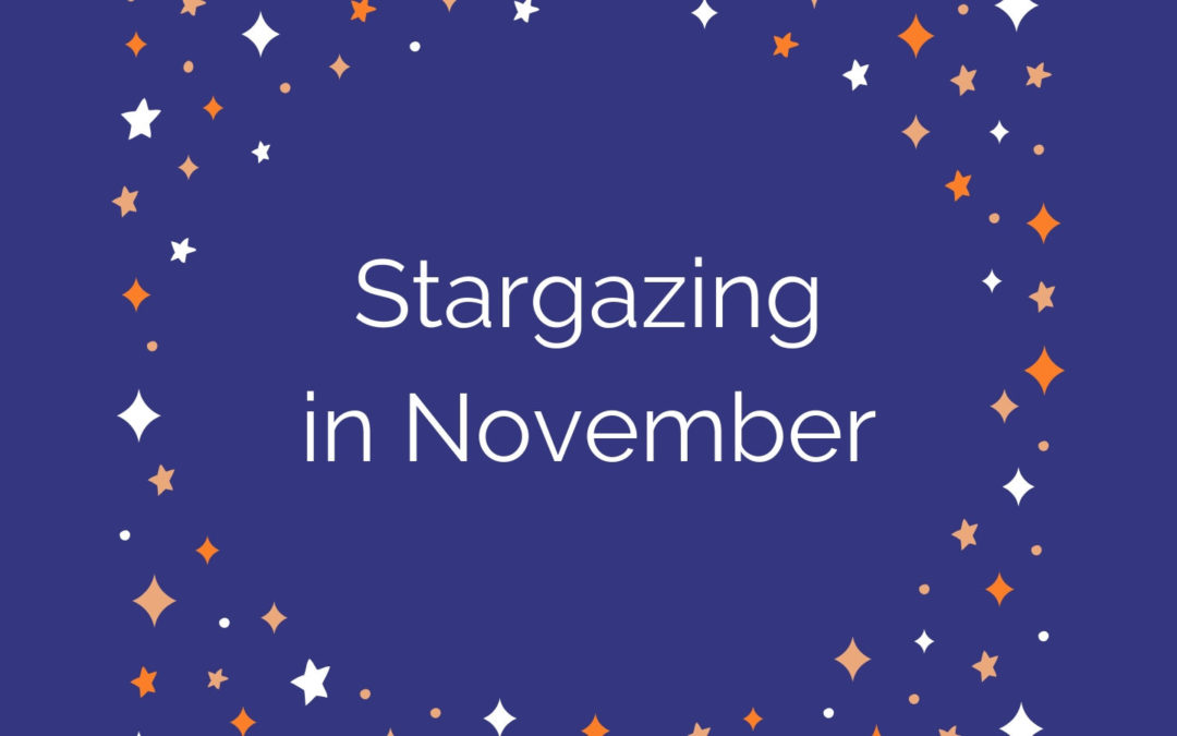 Stargazing in November