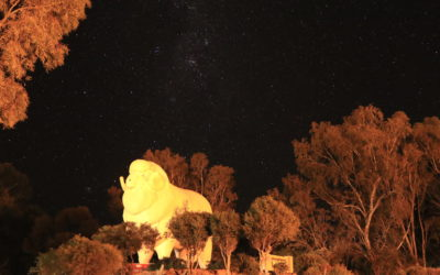"Wagin Astrophotography Hot Spot – ""Bart"", the Giant Ram"