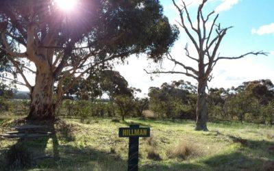 Darkan Observing Site – Hillman Siding