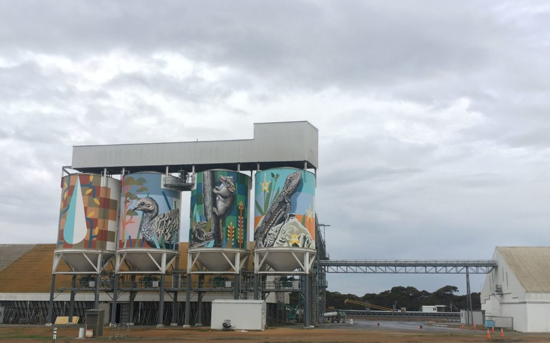 Silo Art in Newdegate near Lake Grace